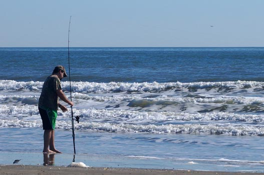 galveston island state park surf fishing